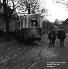Miasto wytnie kasztanowce, by budować tramwaj na Przeróbkę; budowa, tramwaj, wycinka, drzew, ścięcie, kasztanowce, przeróbka, tramwaj na prz...