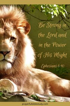 19 Extraordinary Bible Verses about Strength to Energize You When You're Feeling Run-Down At Prayerful Bible Study we strive to set the feet of God's people on that solid Rock we know to be Jesus Christ. When you visit our site, y Strength Bible Quotes, Bible Verses About Strength, Encouraging Bible Verses, Bible Encouragement, Bible Verses Quotes, Lion Bible Verse, Jesus Scriptures, Wisdom Quotes, Quotes Quotes