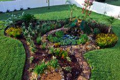 Oasis at Backyard - Bing Images