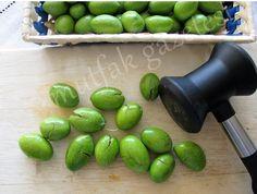 """Yeşil zeytin salamurası nasıl yapılır? İşte size hafta sonu için güzel ve lezzetli bir uğraş. """" Zeytin , kutsal kitaplarda da yer al..."""