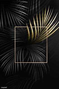 Square golden frame on a tropical background vector   premium image by rawpixel.com / Adj / HwangMangjoo