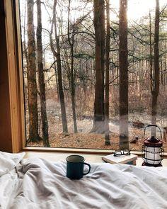 Cozy Aesthetic, Autumn Aesthetic, Late Autumn, Autumn Cozy, Lexa Y Clarke, Window View, Best Seasons, Cozy Cabin, Cabins In The Woods