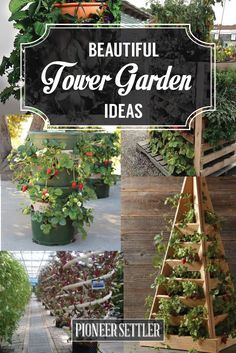 27 Tower Garden Ideas For Your Homestead Are you a big fan of the tower garden? I love the idea of a vertical garden, because it allows for more space for plants to grow – which is especially helpful for a smaller homestead AND for those with bad backs! Garden, Herb Garden, Outdoor Gardens, Tower Garden, Verticle Vegetable Garden, Hanging Garden, Vertical Garden, Container Gardening, Vertical Vegetable Garden