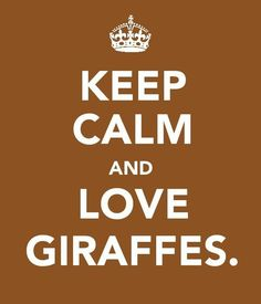 KEEP CALM AND LOVE GIRAFFES . . . . Because Giraffes, are Some of the Coolest Animals we Love !!