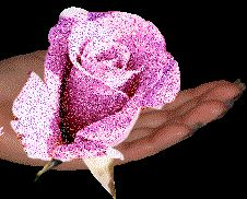 Ask Psychic Love Reading, Call, WhatsApp: Glitter Gif, Glitter Roses, Pink Glitter, Pink Roses, Pink Flowers, Psychic Love Reading, Love Psychic, Hand Pictures, Moving Pictures