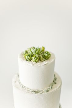succulent cake topper perfection | brumley & wells