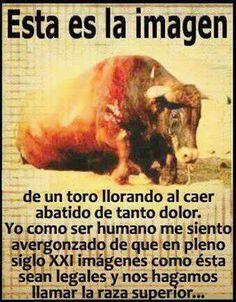 NO a las corridas de toros. NO al maltrato animal -- PLEASE SIGN…