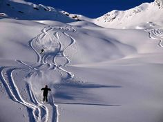 Selkirk Skiing Ski And Snowboard, Skiing, Abstract, Artwork, Outdoor, Ski, Summary, Outdoors, Work Of Art