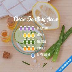 Clean Smelling Home - Essential Oil Diffuser Blend #essentialoil