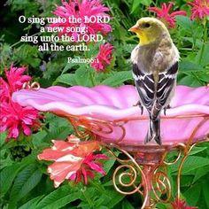 sing! Celebrate Jesus:)...e