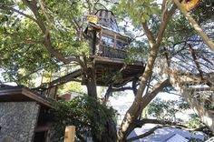 ツリーハウスカフェ。【休日ジャック!】休日にツリーハウスから横浜の街を見下ろして、スイーツを食べてみる。