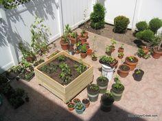 Vegetable-Planter-Box-Tom-6