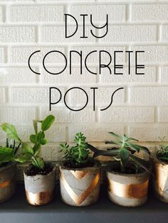 43 DIY Concrete Crafts and Projects - 43 DIY concrete crafts – Gold Painted Concrete Succulent Pots- Cheap and creative projects and tu - Concrete Crafts, Concrete Projects, Concrete Pots, Concrete Planters, Diy Planters, Succulent Pots, Succulents, Plant Pots, Patio Diy