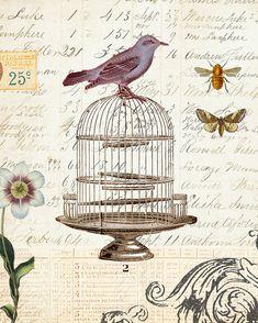 Art Print Botanical Collage digital vintage ledger French bird butterfly bee floral
