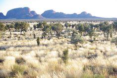 Kata Tjuta rising above the silver plains, NT Aus