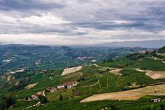Barolo Landscape