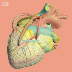 장기하 사람의 마음 - Google 검색