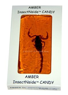 XTREME FOOD - REAL SCORPION INSECT CANDY - GAG GIFT - TOFFEE BRITTLE - Party Fun #HotlixCandy #Candy