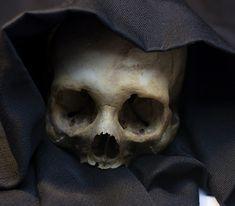 UB_Skull_20.jpg