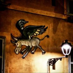 Just raise up the eyes walking near the Tevere in Rome, and you will see the donkeys can fly