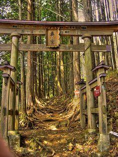 Kumatori-san Trail Torii Gate. Kumatori, Osaka, Japan.