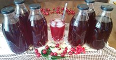 Zimnica Archives - Bakini domaci i video recepti Smoothie Recipes, Smoothies, Canned Juice, Macaroons, Alcoholic Drinks, Dessert Recipes, Food And Drink, Cooking Recipes, Juices