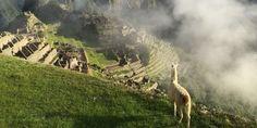 Il Perù è la culla di una delle sei civiltà più importanti della storia. Terra di contrasti (brutali) e contaminazioni (culturali, architettoniche, etniche e culinarie), co