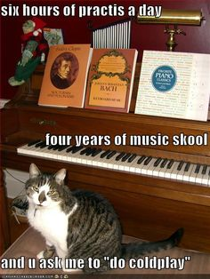 LOLcats is the best place to find and submit funny cat memes and other silly cat materials to share with the world. We find the funny cats that make you LOL so that you don't have to. Funny Cat Memes, Funny Cats, Funny Animals, Adorable Animals, Music Jokes, Music Humor, Piano Funny, Cats Musical, Deep Thinking