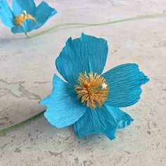 This single stem Himalayan poppy is highly detailed and realistic. Beautiful on its own or in an arrangement, they are sure to add a unique and colorful touch to your home decor, at your wedding, or anywhere you care to enjoy it. Made with extra-fine Italian crepe paper to accentuate the organic look, this beautiful poppy will never wilt or die. Each piece is handcrafted and will be one-of-a-kind.  All blooms are approximately 3 in diameter and are on 18 wire stems. The stems can be cut or…