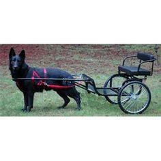 Goat or Dog Cart
