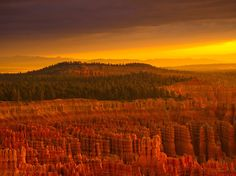 Bryce Canyon -- Landscape Wallpaper -- National Geographic Photo of the Day