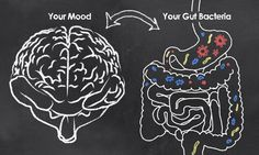 What Is the Connection Between Your Brain and Your Gut?