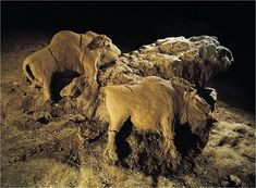Two Bison reliefs in cave at Le Tuc d'Audoubert, France, ca. 15,000-10,000 BCE, Paleolithic
