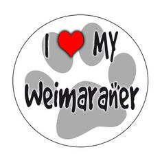 We love our Weims