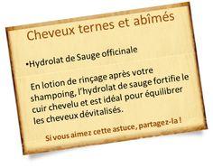 hydrolat sauge officinale pour cheveux ternes et abîmés