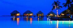 Tahiti, my dream vaca. Hut above the water and an infinity pool. Tree Hd Wallpaper, Strand Wallpaper, Beach Wallpaper, Wallpaper Backgrounds, Phone Backgrounds, Paradise Wallpaper, Latest Wallpaper, Computer Wallpaper, Vacation Deals