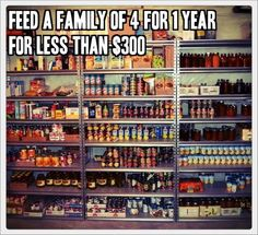 FEED A FAMILY OF 4 FOR 1 YEAR, FOR LESS THAN $300