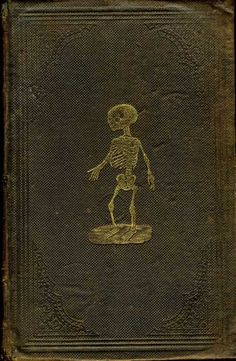 Cover of Henry H. Smith's Anatomical Atlas of the Human Body, 1859.  So cool.