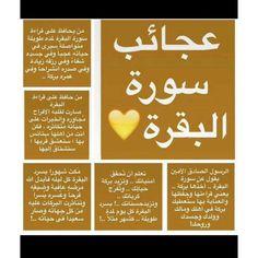 Islam Beliefs, Duaa Islam, Islam Hadith, Islamic Teachings, Islam Religion, Islam Quran, Alhamdulillah, Quran Quotes Inspirational, Islamic Love Quotes