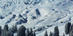 Alpines Leben.../ alpine living...