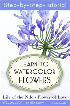 Watercolor flower tutorials with free line art PDF. For Lily of the Nile learn how to paint flowing shades of violet and touch up with colored pencils. Watercolor Flowers Tutorial, Watercolour Tutorials, Flower Tutorial, Watercolour Flowers, Painting Flowers, Watercolor Clouds, Easy Watercolor, Watercolour Painting, Watercolor Wallpaper