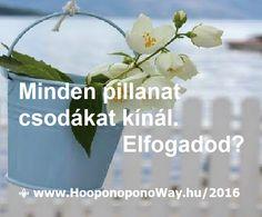 Hálát adok a mai napért. Az Élet minden pillanata csodákat kínál - ha nem lehajtott fejjel, csukott szemmel, fájdalommal teli szívvel haladunk. Ha nem zárkózunk el a saját nagyságunk elől, az Élet földi Paradicsommá válik. Elfogadod? Így szeretlek, Élet! ⚜ Ho'oponoponoWay Magyarország ⚜ Hálás vagyok, hogy október 22-23-án ismét ott lehetek Mabel Katz Ho'oponopono tanfolyamán.www.HooponoponoWay.hu/2016