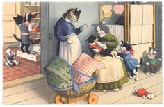 Mainzer Cats - Mom & Nanny & Some Mischievious Kittens