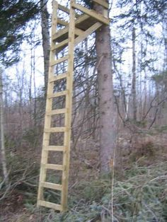 ladderstand_mod.jpg Photo: This Photo was uploaded by Lakon. Find other ladderstand_mod.jpg pictures and photos or upload your own with Photobucket free...