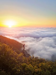 Sam Graves Mount Tam iPhone 6 by Toby Harriman on 500px