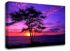 Lilac Pink Ocean Sunrise landscape canvas from only £19.99 at Infusion Art http://www.infusionart.co.uk/products/Lilac-Pink-Ocean-Sunrise-259579.aspx