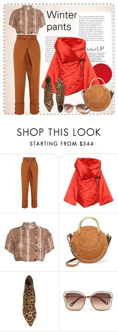 """""""Winter pants"""" by krista-zou on Polyvore featuring Proenza Schouler, Isa Arfen, Chloé and Tabitha Simmons"""