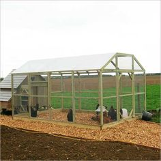 Poultry Protection Pen 9ft x 12ft