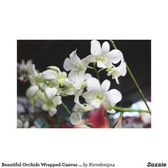 Beautiful Orchids Wrapped Canvas Print