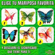 Las mariposas son animales maravillosos, símbolo de libertad y alegría. Las características de tu mariposa favorita (su forma, sus color...